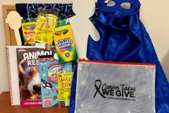 Cancer Comfort Kit & Busy Bag Fills